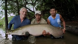 What Enormous Creatures Are Lurking in Fresh Waters?