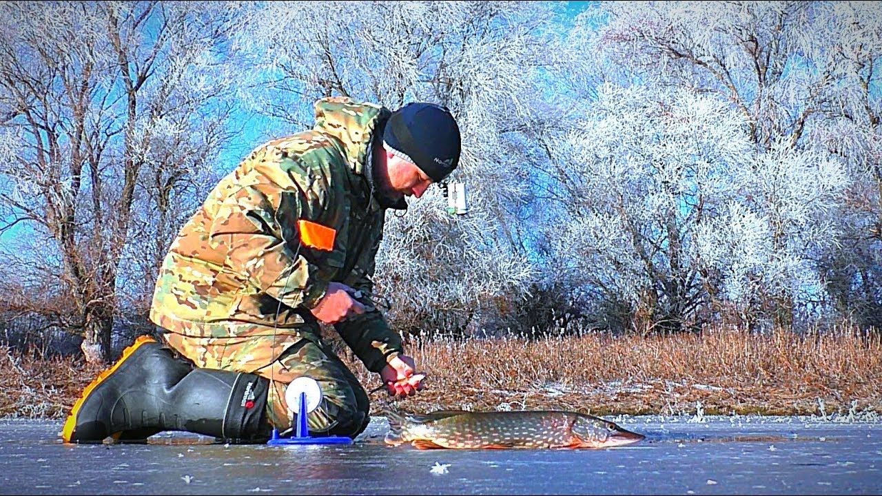 зимняя рыбалка на оби 2020 год