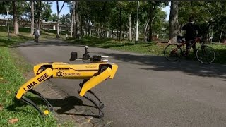 Watch this robotic dog encourage park-goers to practice social distancing in Singapore