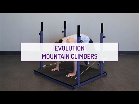 Evolution Mountain Climbers