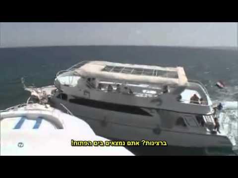 ספינות תיירים מתנגשות בלב ים