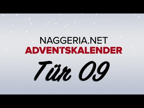 [Tür 09] Unboxing: The Raid – Evolution (Naggeria Adventskalender 2015)