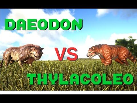 ark thylacoleo zähmen