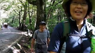 奥入瀬渓流10kmの絶景ー2青森県