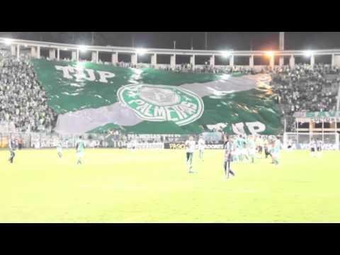 Las banderas de los hinchas del Palmeiras
