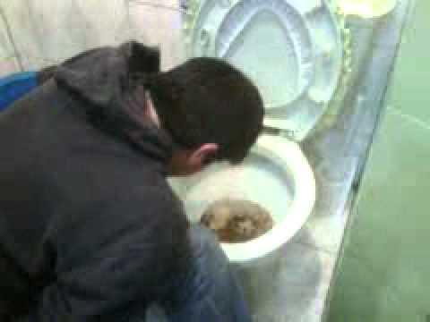 Al tratamiento del alcoholismo es necesario