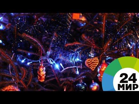 Первая искусственная: на главной елке Молдовы зажгли огни - МИР 24