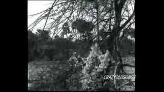 RAFI - NEERAJ - ROSHAN (NAYI UMAR KI NAYI   - YouTube