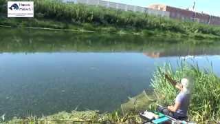 Тульский рыболовный форум наша тема
