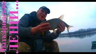 Рыбалка в лыткарино