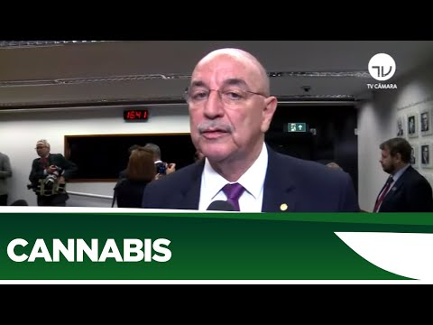 Cultivo da Cannabis sativa em debate - 03/03/20