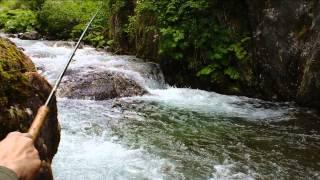 Pêche Au Toc En Hte Montagne Juin 2013