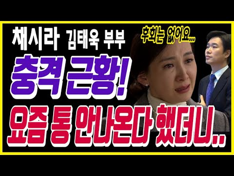 [유튜브] 채시라 김태욱 부부 충격 근황! 요즘 통 안나온다 했더니.