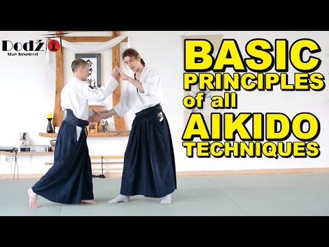[Aikido Tutorial] Main Principles of All Techniques - YouTube