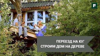 Экологичный дом на дереве в горах. Строим с друзьями своими руками // FORUMHOUSE