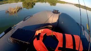 Рыбалка в саратовской области кошели
