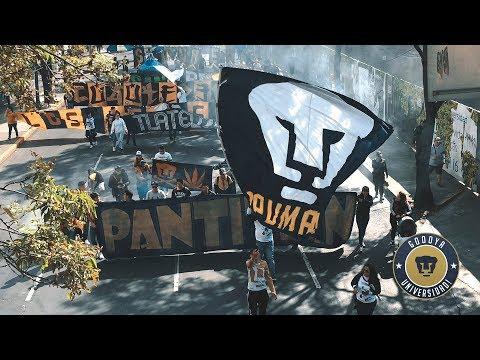 """""""Marcha 21 años La Rebel"""" Barra: La Rebel • Club: Pumas"""