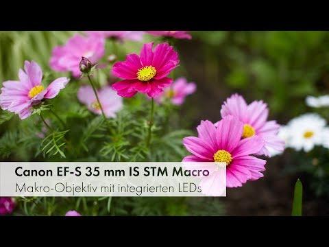 Canon EF-S 35 mm f/2.8 Macro IS STM | Makro-Objektiv mit LED-Beleuchtung im Test