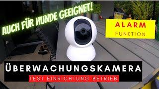 Günstige Überwachungskamera - Test und Einrichtung