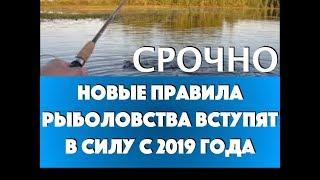 Запреты на рыбалку 2019 в карелии