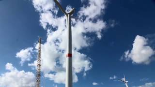 Algeco Windmolen by BuildEvolution