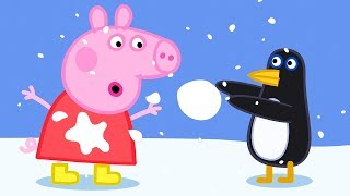 Peppa Pig Official Channel | Peppa Pig Plays with Penguins at the South Pole