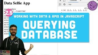 2.5 Database Query - Working with Data and APIs in JavaScript