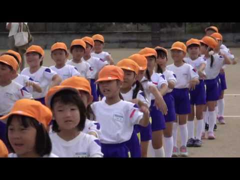 手賀の丘幼稚園・保育園 2016 運動会 げんきっきたいそう
