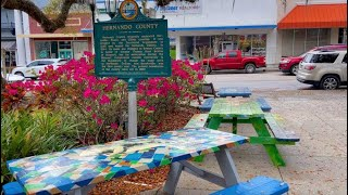 ADDING ART TO OUTSIDE EATING IN DOWNTOWN BROOKSVILLE (2021)