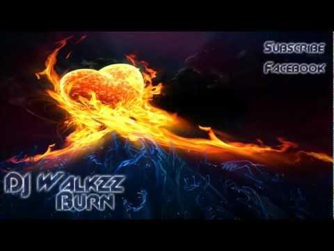 Alan Walker - Burn