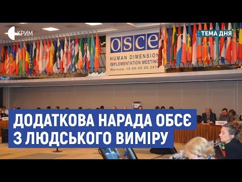 Додаткова нарада ОБСЄ з людського виміру | Сєдов, Бабін | Тема дня