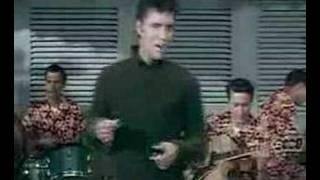 Elvis / Your so Square