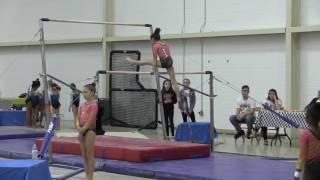 Gymnastics Judging Guide - L3 Bars