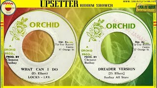 WHAT CAN I DO + DREADER VERSION ⬥Locks Lee & Bushay All Stars⬥