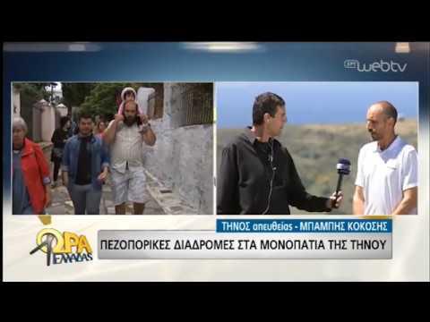 Πεζοπορικές διαδρομές στην Τήνο! | 16/05/2019 | ΕΡΤ