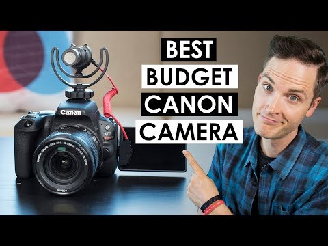Best Budget Canon Camera — Canon SL2 Review and Video Test