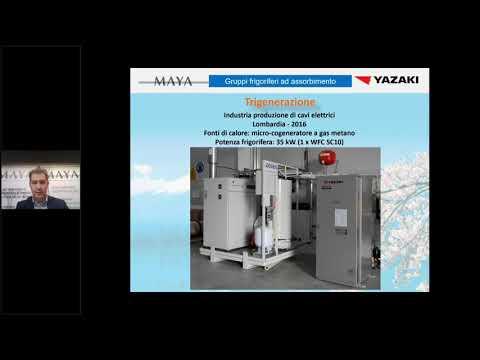 Biomasse, Climatizzazione, Cogenerazione, Efficienza energetica, Poligenerazione, Recupero calore, Refrigerazione, Teleriscaldamento, Trigenerazione