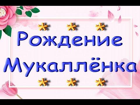 РОЖДЕНИЕ ОРХИДЕИ:Мукаллёнок!!!По горячим следам :)) Детка на пеньке орхидеи.