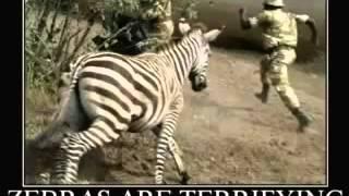 Очень смешной Животные 4