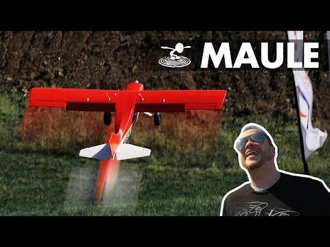eflite-maule-m7--up-close-and-personal