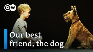 Dogs & us - The secrets of an unbreakable friendship | DW Documentary