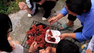 【鑫哥】舌尖上的贵州,寻找侗族酸鱼,好客的阿姐一下烤了那么多