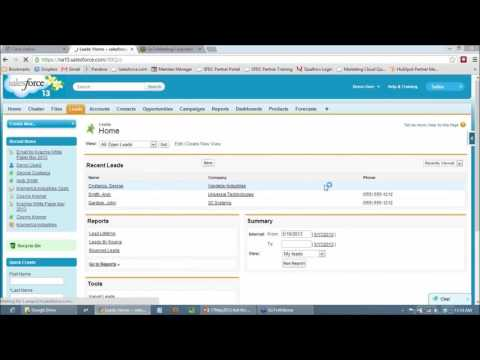 Optimizing Campaigns and Lead Management in Salesforce ...