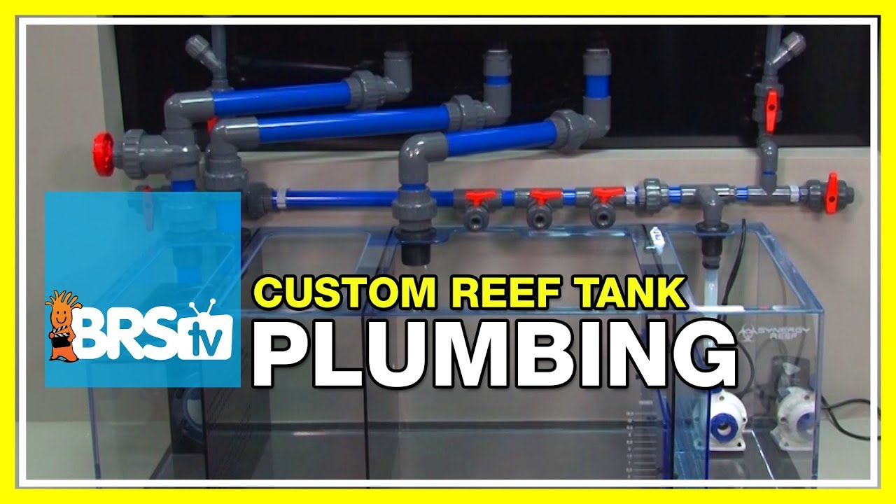 Week 5: Plumbing, Overflows, and Return Pumps | 52 Weeks of Reefing #BRS160