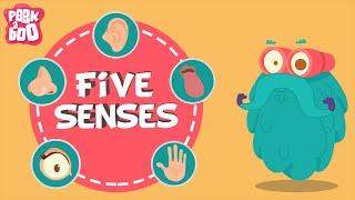 The Five Senses | The Dr. Binocs Show | Educational Videos For Kids
