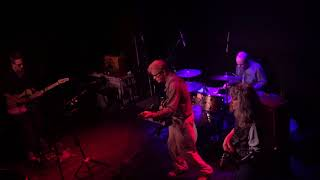 Everybody's Got Someything to Hide (Beatles Cover) - The Feelies - April 15 2018