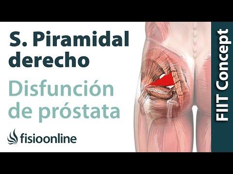 Exercício para o tratamento de prostatite crônica