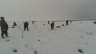 Отчеты по рыбалке татария