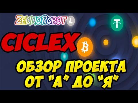 Обзор компании CICLEX. Павел Лернер в CiCLEX. Фонд CICLEX