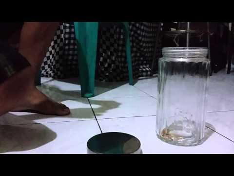 Die Behandlung des Ekzems auf den Händen perm